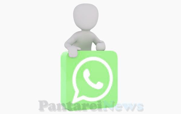bug whatsapp